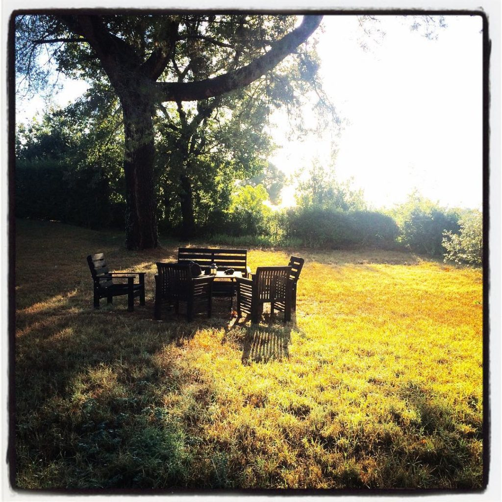 Bonjour Opio France! Olive trees cork oaks arbutus trees heatherhellip