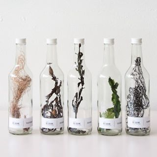 Those of us who love seaweed Research bottles filled withhellip