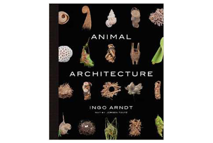 Animal Architecture by Ingo Arndt