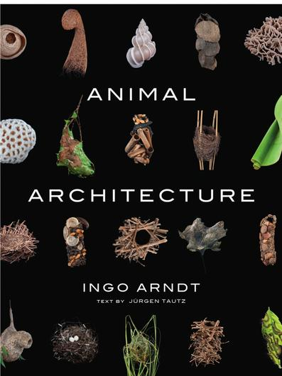 animal_architecture_cover_800