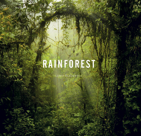 Rainforest by Lewis Blackwell