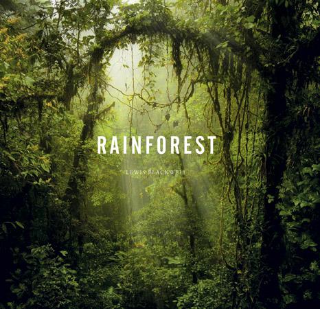rainforestcoverm