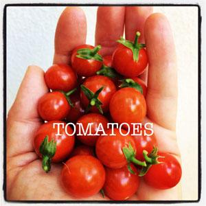 tomatoes-cherry