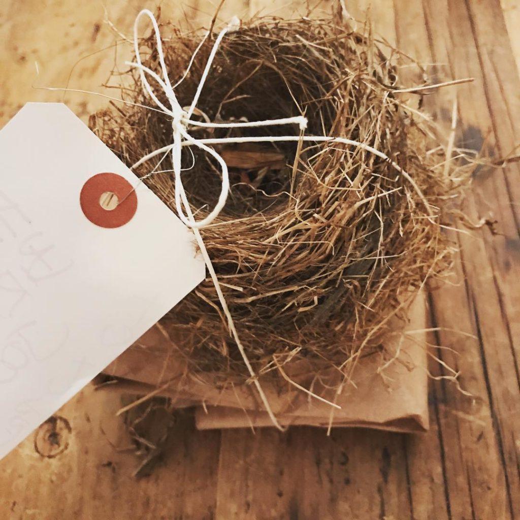 Birthday gift for a nature loving friend One found birdshellip