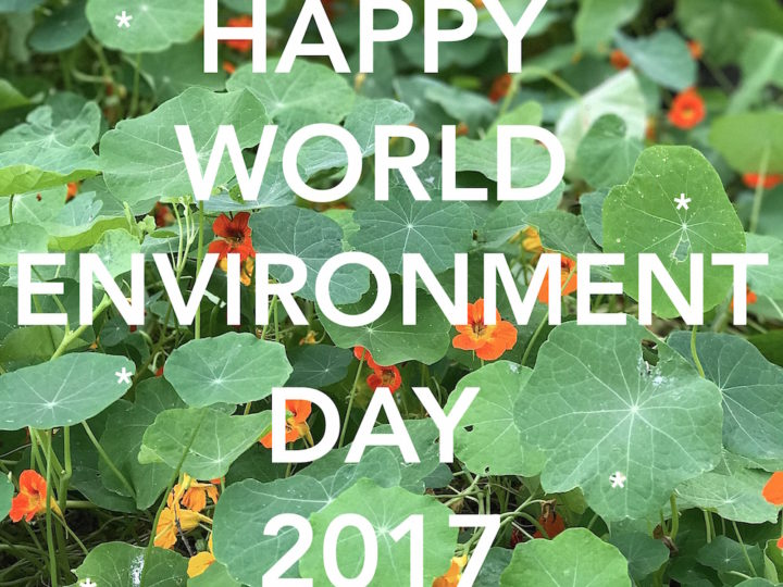 Reconnect to nature on World Environment Day, June 5th!