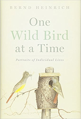 One Wild Bird at a Time: Portraits of Individual Lives by Bernd Heinrich