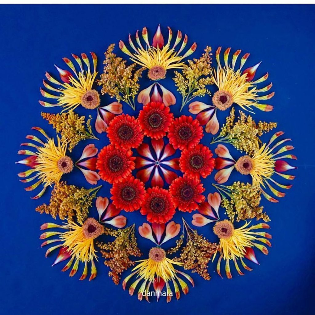 Flower petal mandala by kathydanmala Beautiful creation using only flowerhellip