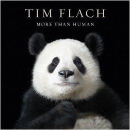 More Than Human by Tim Flach