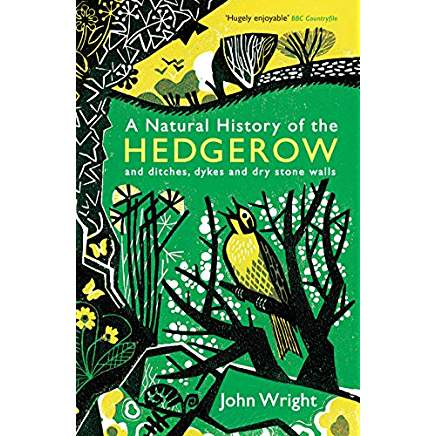 A Natural History of the Hedgerow: and ditches, dykes and dry stone walls by John Wright