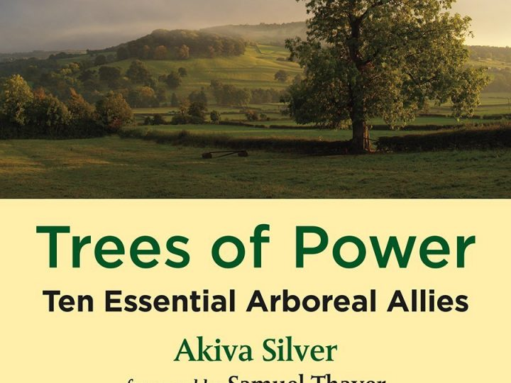 Trees Of Power: The organic grower's guide to planting, propagation, culture, and ecology   By Akiva Silver