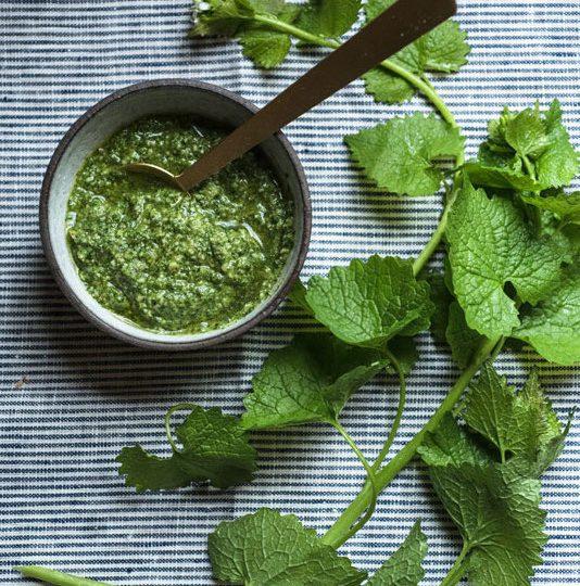 Wild Green Pesto