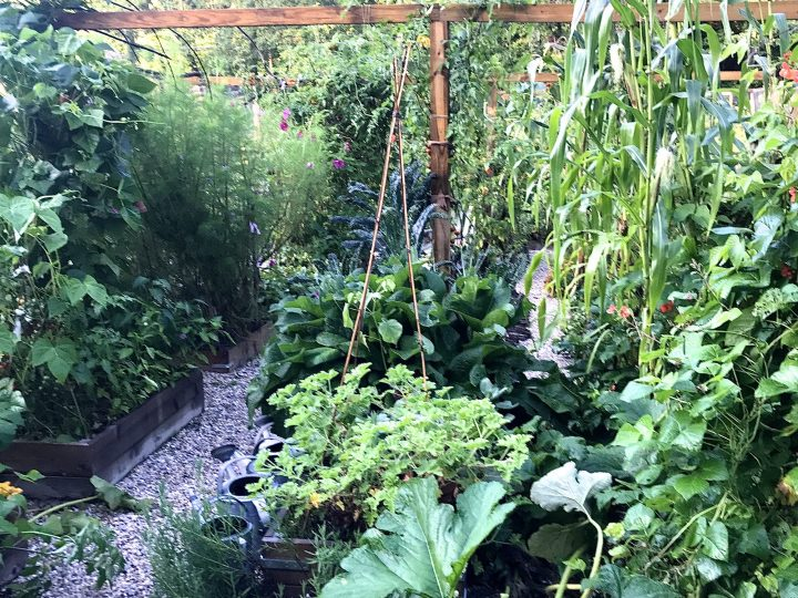 Climate Victory Gardens