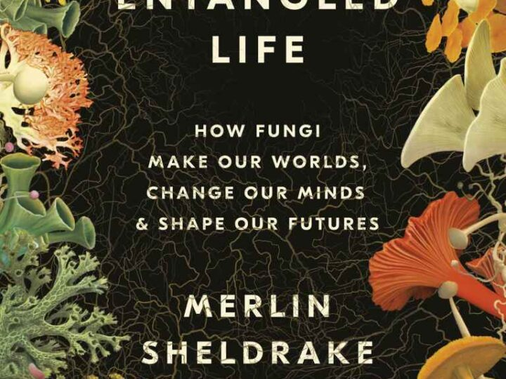Entangled Life: How Fungi Make Our Worlds, Change Our Minds & Shape Our Futures   By Merlin Sheldrake