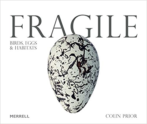 Fragile: Birds, Eggs and Habitats  By Colin Prior